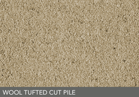 Sub-category-link-flooring-carpet-type